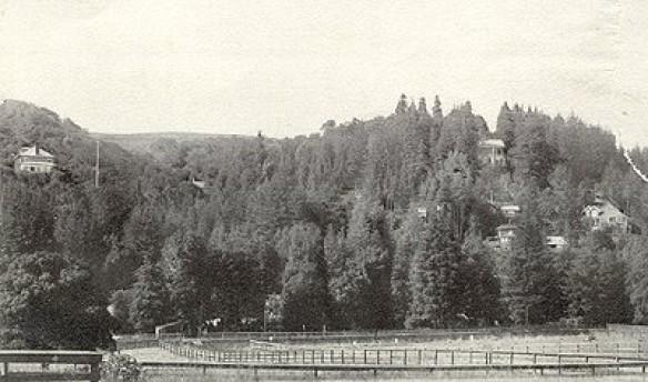 Hillside above Miller Avenue c. 1902, with lots staked out for development.