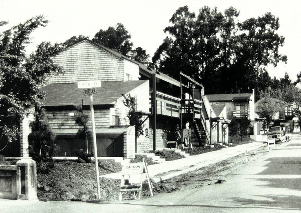 Homestead Terrace - 1968