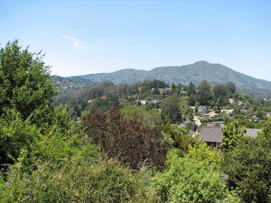 Mt. Tamalpais from LaVerne Avenue and Homestead Boulevard in 2007.
