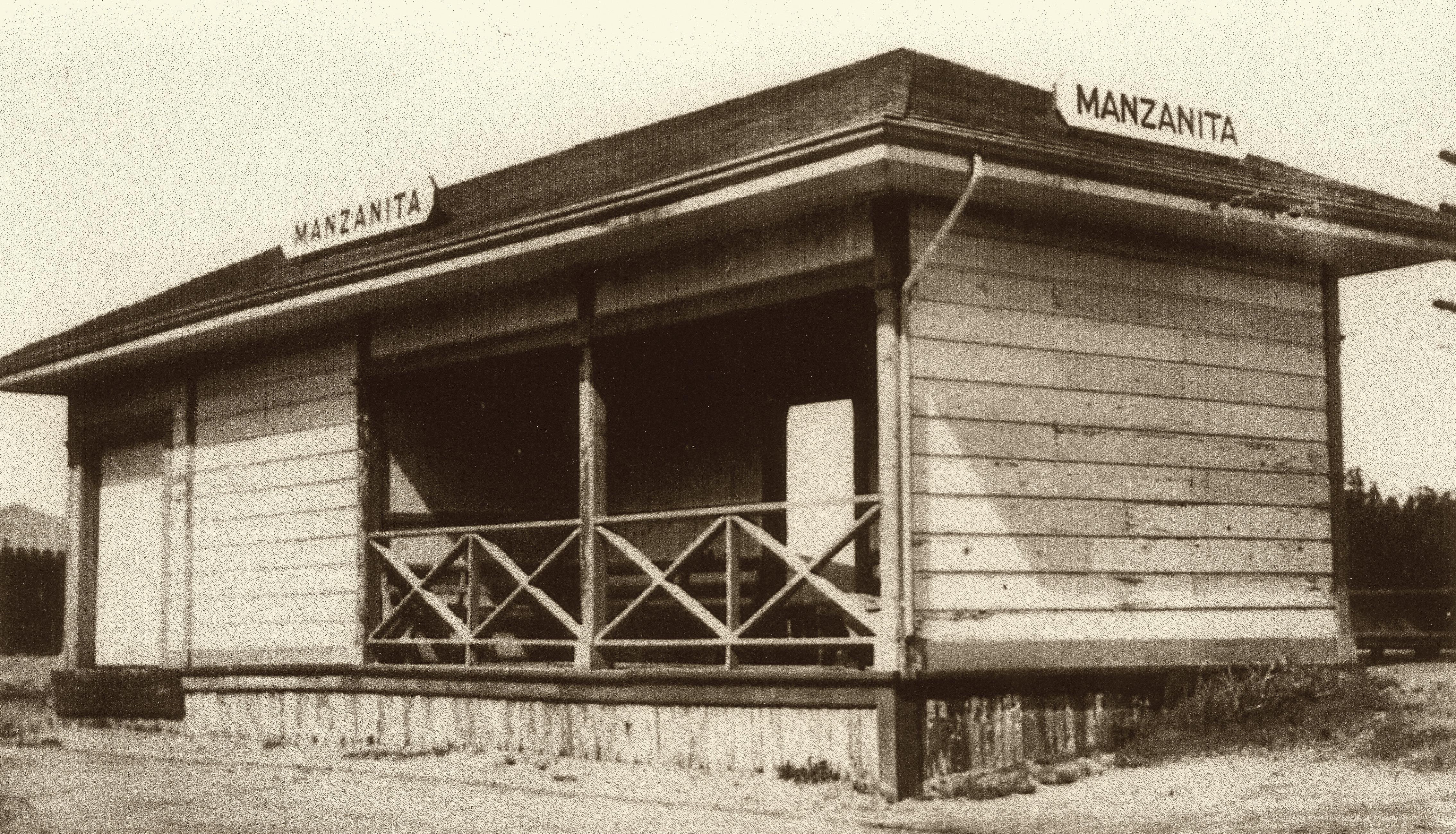 Manzanita (courtesy of Fred Codoni)