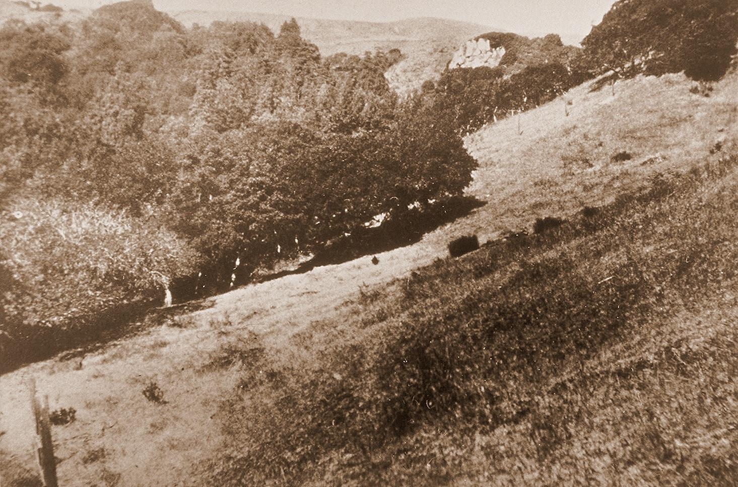 Castle Rock 1904
